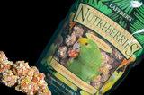 Aktion Nutri-Berries Quintet Klein_