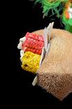 Papegaaienspeelgoed kokos