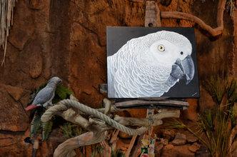 Grau papagei ölgemälde