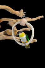 Parrot Ring Small
